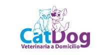 12-catdog-veterinaria